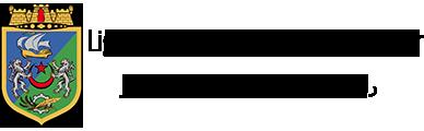 Logo LFWA